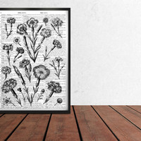 Minimal home decor Botanic art Flower poster Floral print TO356-B