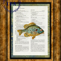 Yellow Sunfish into the Light Glow Art - Vintage Upcycled Cookbook Page Art Print, Lake Fish Print