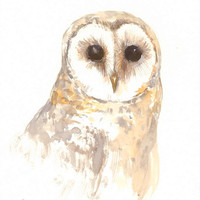 Barn Owl Painitng, original watercolor painting, 12 X 9 in, white owl art, owl lover