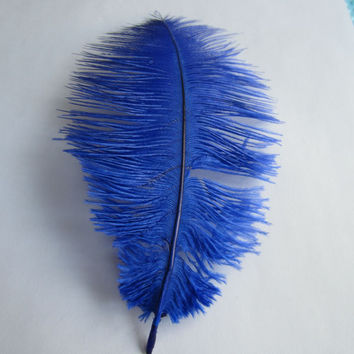Ostrich Feather Decorative Centerpiece, 15-inch, Royal Blue