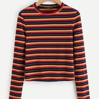 Colorful Striped Ribbed Tee