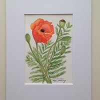 Orange Poppies #2, Original Watercolor Painting, 8x10 mat Not a Print