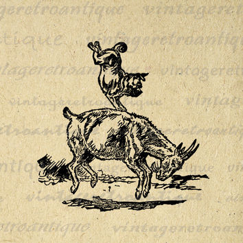 Dog Balancing on the Back of a Goat Printable Digital Graphic Circus Animals Image Download Vintage Clip Art for Transfers HQ 300dpi No.2601
