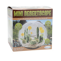 Mini Desertscape Kit