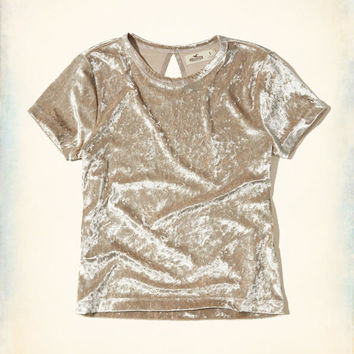 Girls Velvet Baby T-Shirt | Girls Tops | HollisterCo.com