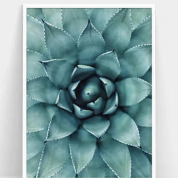 Succulent Print - Wall Art Abstract - Printable Poster Art - Photography Print Succulent - Printable Photography Urban - Wall Art Prints