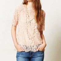 Elysian Lace Top by Vanessa Virginia