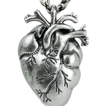 Human Anatomical Heart Necklace Alternative Gothic Jewelry Medical Oddities