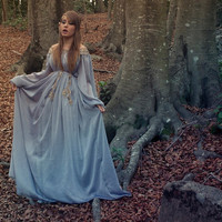 Elven fairytale dress in grey blue silk gauze chiffon and golden embroidery