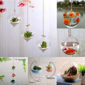 Hanging Ball Glass Flower Planter Vase Terrarium Container Landscape Bottle