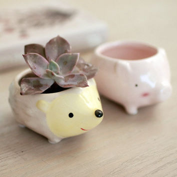 Kawaii Little Animals Ceramic Flowerpot Pig Elephant Hedgehog Planter Cute Succulent Plants Flower Pot Balcony Window Decor Home Garden