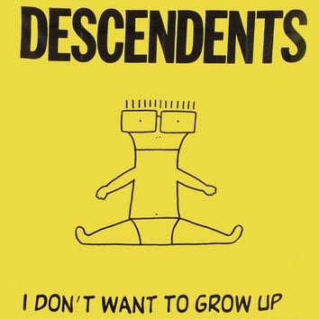 Descendents - Poster Flag