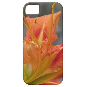 Wilting Tiger Lily iPhone Case iPhone 5 Covers