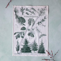Conifer Chart Tea Towel