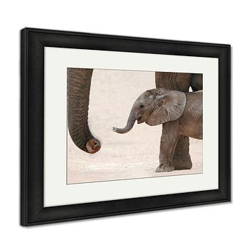 Framed Print, African Elephant Baby And Mom
