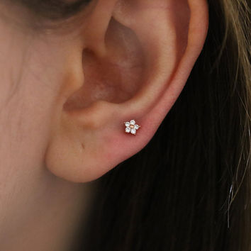 1febcea29 Tiny Baby Flower 4mm piercing, tragus piercing, conch piercing, helix  piercing, tragus