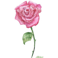 Pink Rose Watercolor Painting Giclee Print - 5 x 7 - Floral - Red Rose Fine Art
