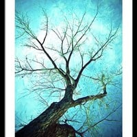 Winter Tree Blue Framed Print