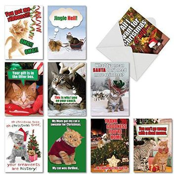 10 Assorted 'PetiGreet Cats Christmas' Boxed & Funny Cat Christmas Cards w/Envelopes - Ten Different Merry Xmas Designs - Hilarious Variety Box for Seasons Greetings & Happy Holidays