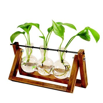 Terrarium Creative Hydroponic Plant Transparent Vase Wooden Frame vase decoration