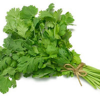 Heirloom 300 SEEDS Coriandrum Coriander Chinese parsley Cilantro Herbs Fresh Organic F60