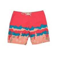 AMBSN Joshua Board Shorts