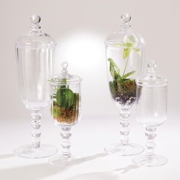 Apothecary Glass Jar Clear Sm