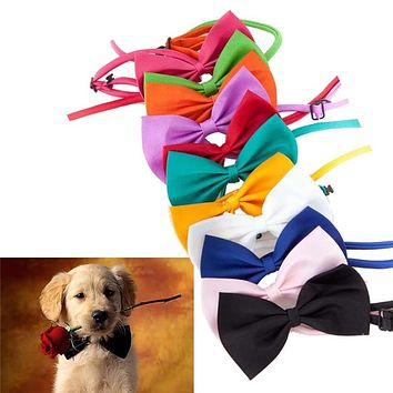 15 Candy colors  Fashion Cute Dog Puppy Cat Kitten Pet Toy Kid Bow Tie Necktie Clothes decoration free shipping