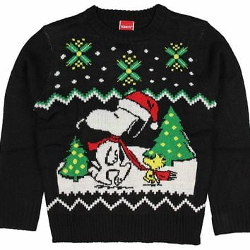 Peanuts Boys' Snoopy and Woodstock Holiday Sweater