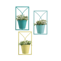 Pismo Wall Planter - Set of 3