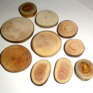 Wooden discs mix. Wood slice mix. Various wood types, sizes. Wooden slices, branches. Circle wood, round slice discs wood, reclaimed wood.