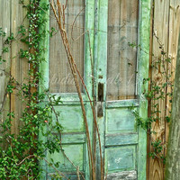Door Photography, Old Doors, Garden Photography, Travel, Green Doors, Fine Art, Cottage, Shabby, Rustic Farmhouse, Green Art Print