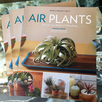 Airplants, The Curious World of Tillandsia by Zenaida Sengo