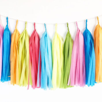Carnival Tassel Garland - Pink, Blue, Green, Yellow, Orange Tissue Paper Tassel Garland - Party Decoration // Photography Prop