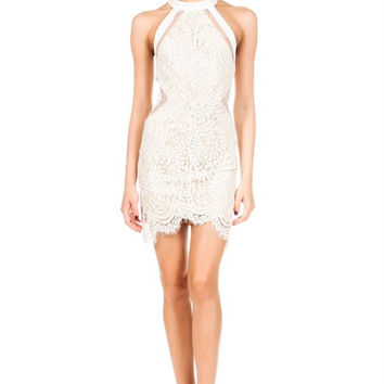 Combined Laced Bodycon Dress - Beige - Final Sale