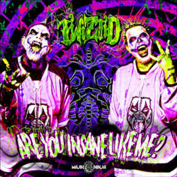 """Are You Insane Like Me-Twiztid, 7"""" (RECORD STORE DAY)"""