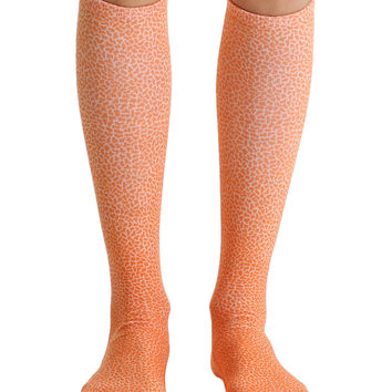 Pebble Orange Knee High Socks