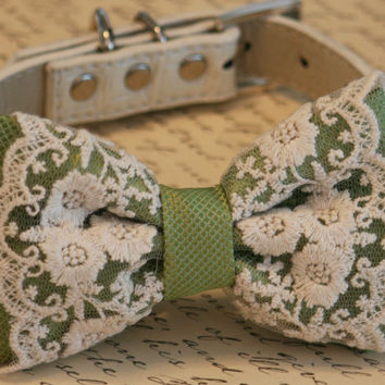 Green Dog Bow Tie, Spring Green Vintage Wedding, Lace wedding accessory