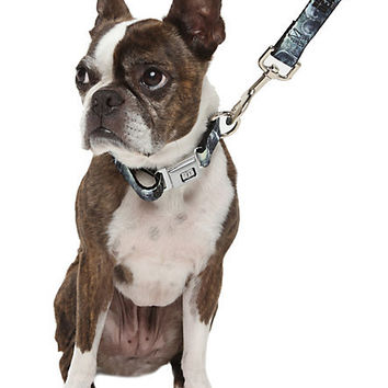 The Walking Dead Dog Collar & Leash Set | Hot Topic