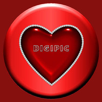 DigiPic1
