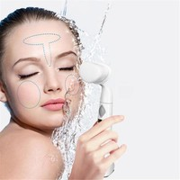 Waterproof Cleaning Skin Care Beauty Facial Instrument Electric Brush
