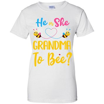 Gender Reveal Pink Blue What Will It Bee He Or She Grandma
