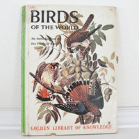 Vintage Book, Vintage Bird Book, Childrens Bird Book, Golden Library of Knowledge, Birds of the World, 1950s Bird Book, Natural History