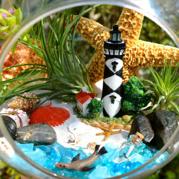 "Lighthouse Beach Terrarium Kit ~ Sea Side ~ Resin Lighthouse ~ Seal ~ Airplants ~ Message in a Bottle ~ 7"" Glass Globe - Beach Decor ~ Gift"
