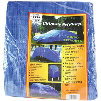 World & Main Llc Reinforced Plastic Tarp (16ft X 20ft)