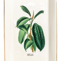 Porcelain dish with a motif - Natural white/Ficus - | H&M US