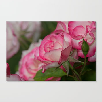 Nicole Rose Canvas Print by Glenn Franco Simmons