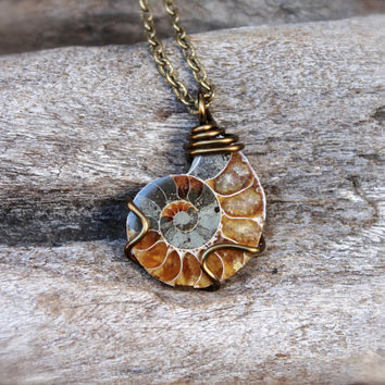 Ammonite Fossil Necklace - Wire Wrapped Shell Fossil Jewelry - Natural Ammonite Jewelry - Wiccan Necklace - Ammonite Necklace - Boho Jewelry