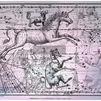 Canis Minor, Canis Major, Monoceros, Lepus, Pyxis Nautica, Orion, Constellation Print, Metallic Art Print