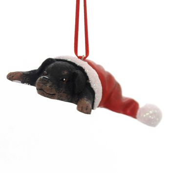 Holiday Ornaments PUPPY IN SANTA HAT Best Friend Canine 131401 Rottweiler